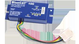 bluecat-100-picture