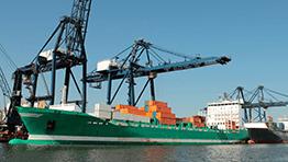 Industry-gantry-crane-image